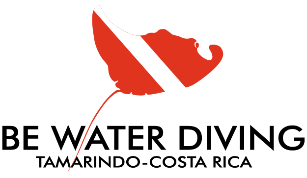 Be Water Diving | Buceo en Tamarindo